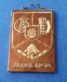 Tablou ornamental - heraldica - Bacau - metaloplastie