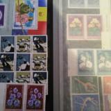 Vand clasoare cu timbre , colite , blocuri ( anii 1950-1990)