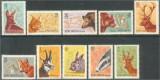 1961 Romania,LP 521-Vanatoarea-MNH, Fauna, Nestampilat