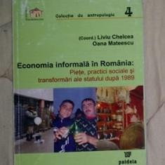 Economia informala in Romania  : piete, practici sociale si transformari...
