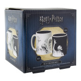 Harry Potter Voldemort Heat Change Mug /Merchandise