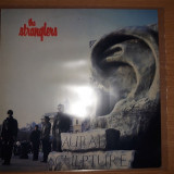 LP The Stranglers – Aural Sculpture, VINIL