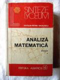 """""""ANALIZA MATEMATICA. Aplicatii - Vol. I"""" - Catalin-Petru Nicolescu, 1987, Ed. II"""