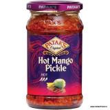 PATAK Mango Pickle Extra Hot (Muraturi Indiene de Mango) 283g