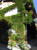 Vand casa in municipiul Calarasi