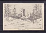 HARGHITA  CICEU  RUINELE CICEULUI IN 1800 EDITURA LICEUL DE FETE DEJ JUDET SOMES, Necirculata, Printata