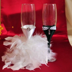 Pahare nunta pene mire si mireasa P003A