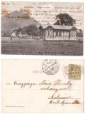 Baia Mare 1904 - Dealul Crucii, ilustrata circulata