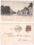 Carei 1900 - Ilustrata circulata