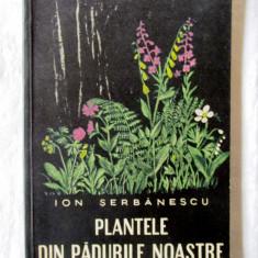 PLANTELE DIN PADURILE NOASTRE, Ion Serbanescu, 1959, Alta editura