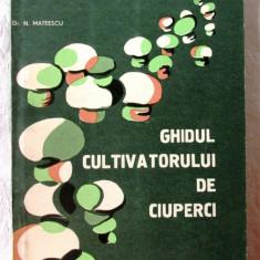 GHIDUL CULTIVATORULUI DE CIUPERCI, N. Mateescu, 1983. CENTROCOOP, Alta editura, 1959