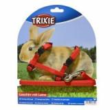 Ham şi lesă pentru iepuri - roşu, cataramă de plastic