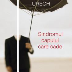 Sindromul capului care cade (eBook)