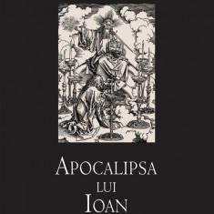 Apocalipsa lui Ioan (eBook)