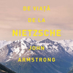 Lectii de viata de la Nietzsche (eBook)