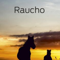 Raucho (eBook)