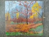 Pictura / tablou peisaj - toamna in padure - de Podolyak Vilmos