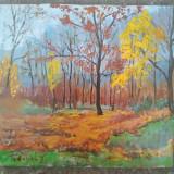 Pictura / tablou peisaj - toamna in padure - de Podolyak Vilmos, Peisaje, Ulei, Impresionism