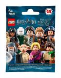 LEGO® Minifigures - Harry Potter ™ si Fantastic Beasts™ (71022)