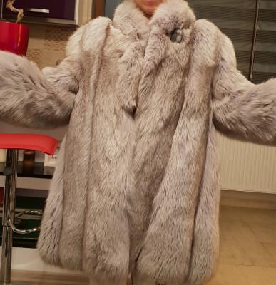 Vand haina de blana naturala,vulpe polara argintie foto