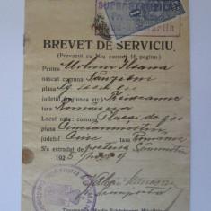 Rar!Brevet serviciu Ciuc-Sanmartin cu suprastampila Pretura plasci Ciuc-San.1925