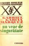 Gabriel Garcia Marquez, Un veac de singuratate