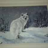 Tablou vulpe polara - pictura ulei, Animale, Realism