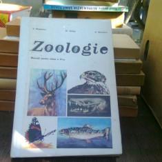 Zoologie - Al. Dabita (manual clasa a VI-a)