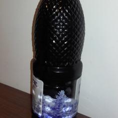 Vand capsunata, e ca visinata (100% naturala,  la bidon de 2L)
