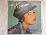 margareta paslaru pislaru in gradina bucuriilor disc vinyl lp muzica pop usoara