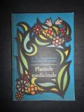 D. GR. CONSTANTINESCU - PLANTELE MEDICINALE