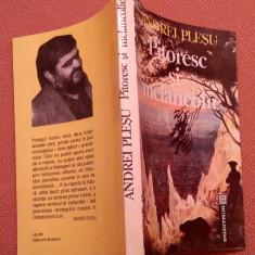 Pitoresc si melancolie. Humanitas, 1992 - Andrei Plesu