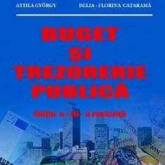 Buget si trezorerie publica - Tatiana Mosteanu