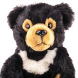 Lumea Animalutelor Nr.46 - Ursul gulerat