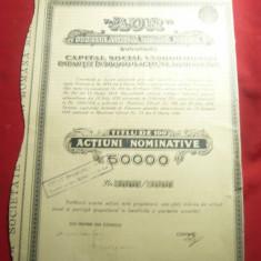 Titlu 100 Actiuni la Firma AUR -Soc.Anonima la Minele de Aur 1946 ,emisiunea II