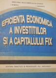 Eficienta economica a investitiilor si a capitalului fix de I. Romanu