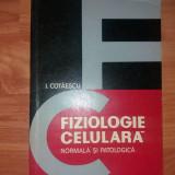 Fiziologie , biologie celulara , patologie