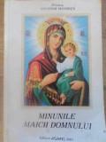 MINUNILE MAICII DOMNULUI - PROTOS. NICODIM MANDITA