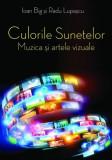 Culorile sunetelor. Muzica și artele vizuale