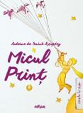 Micul Prinţ HC, Antoine de Saint-Exupery
