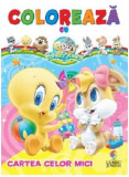 Cartea celor mici! Colorează cu Baby Looney Tunes