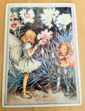 Carte Postala  - de colectie - Villeroy and Boch -  Fluturi, Necirculata, Printata, Germania