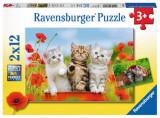 PUZZLE AVENTURA PISICUTELOR, 2x12 PIESE, Ravensburger