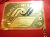 Diploma de Excelenta- Tenis Club - AS 1995 ,plastifiata