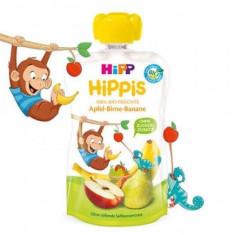 Piure de fructe cu mar para si banana ECO HIPPis 100g Hipp