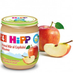 Piure Bio din mere pentru bebelusi 125g HiPP
