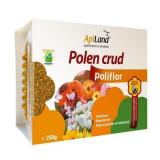 Polen crud poliflor conventional caserola 250g Apiland