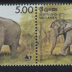 SRI LANKA 1986 WWF ELEFANTI COTA MICHEL 70 EURO