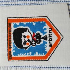 """Ecuson pionieresc, perioada comunista """"Cupa sperantelor"""" - arbitru"""