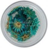 Flori uscate - turcoaz